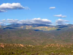 New Mexico Fall Foliage
