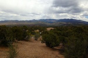 2912-Aspen-View-Lot-181-Santa-Fe-New-Mexico-homesantafecom-Paul-McDonald