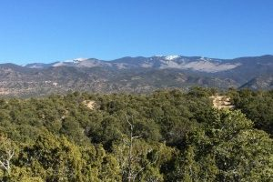 325-Pawprint-Trail-Lot-132-Santa-Fe-New-Mexico-homesantafecom-Paul-McDonald